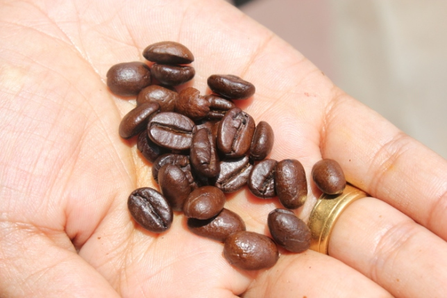 Fresh roasted coffee beans IMG_9631_Anurag Priya