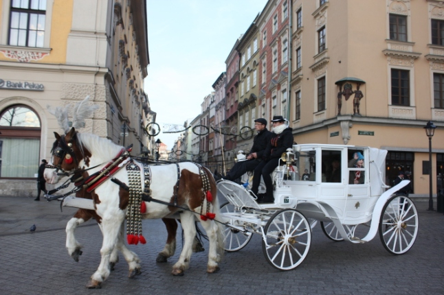 IMG_1989 Horse carriage ride at Rynek Glowny_Anurag Mallick