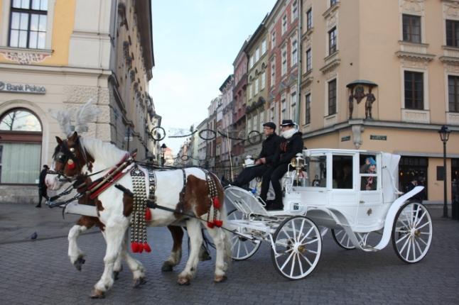 IMG_1989 Horse carriage ride at Rynek Glowny_Anurag Mallick