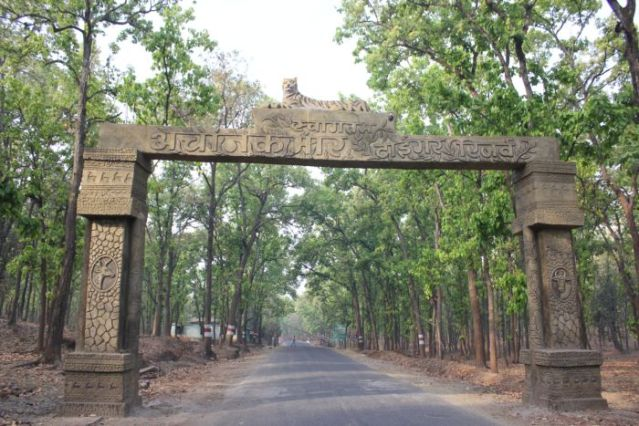 Achanakmar Chhattisgarh_Anurag Mallick IMG_6214 opt