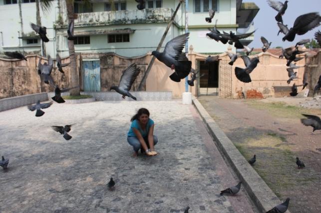 Kerala_Cochin-Feeding pigeons at Mattancherry Jain Temple IMG_9997_Anurag & Priya
