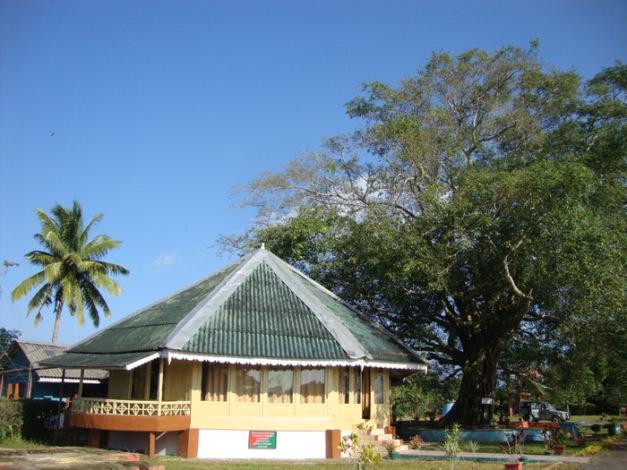 Mount Hariett National Park_Anurag Mallick DSC07745