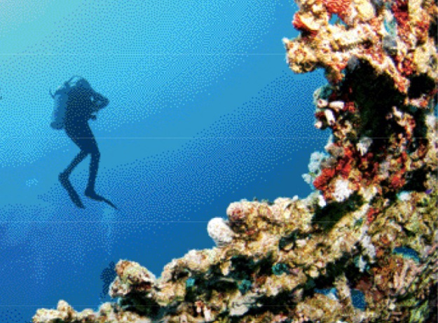 Scuba diving Andamans_Discover India