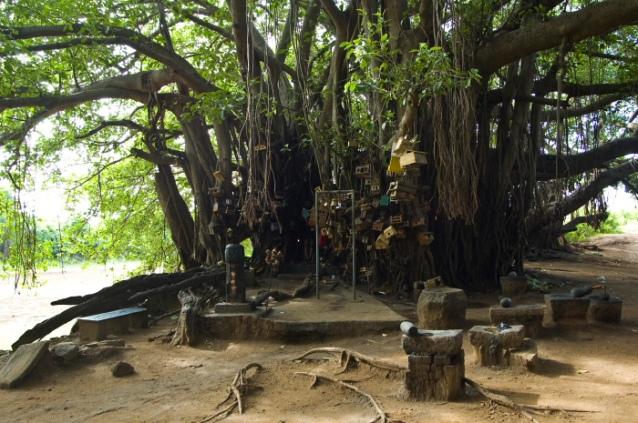 Chinganachera Temple Kerala DSC_0355