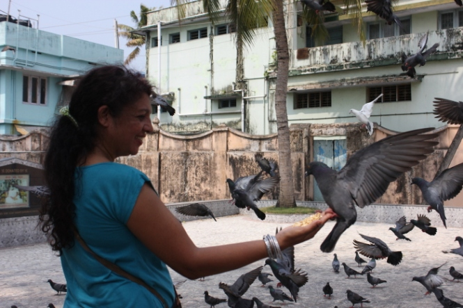 IMG_9983 Feeding pigeons at Jain Temple_Anurag Mallick