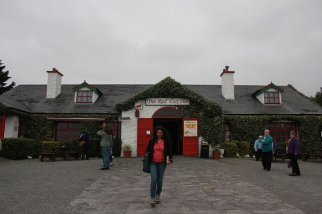Ring of Kerry Ireland-Anurag Mallick IMG_7103_opt