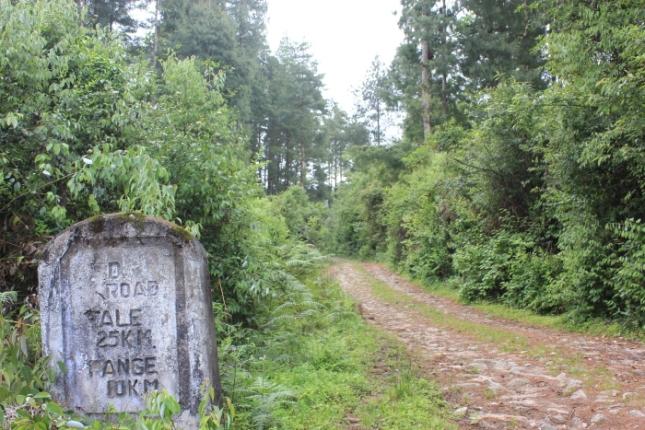 IMG_7664 Ziro trek to Talle Valley