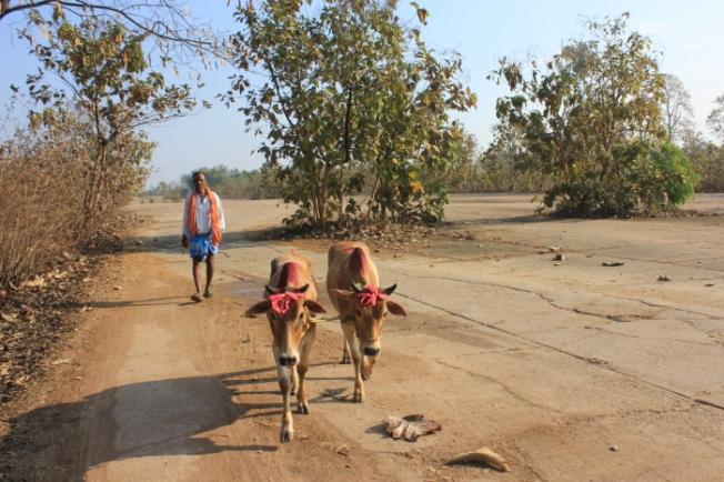 IMG_8244_Jamshedpur-Anurag Priya