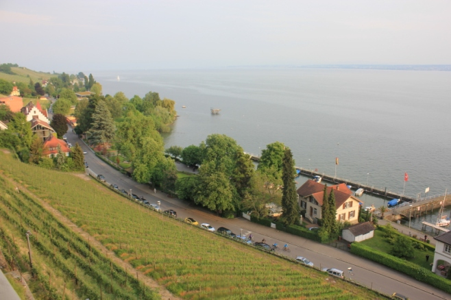 Meersburg-Vineyards by the lake IMG_1491_Anurag Mallick