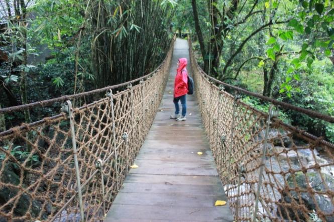 Vythiri Resort rope bridge IMG_1686_Anurag Priya