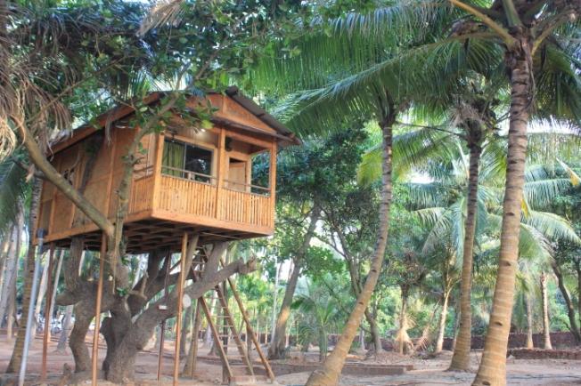 Oceano Pearl Tree House Ganeshgule IMG_3258_Anurag & Priya