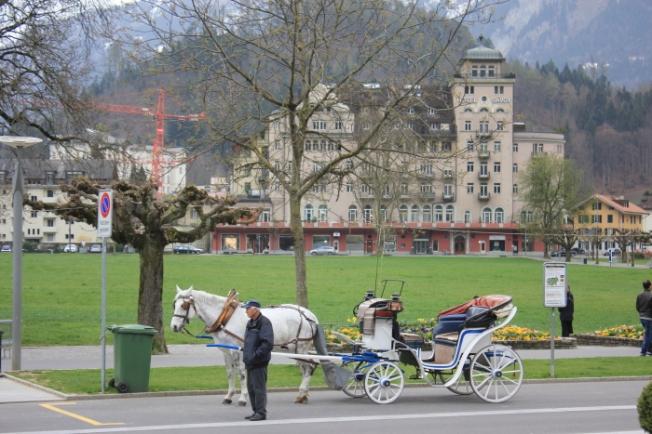 Interlaken-Central Park IMG_7352_Anurag Priya