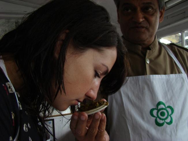 Darjeeling-Tea tasting at Makaibari DSC08935