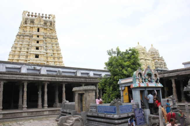 Kanchipuram Ekambranath Temple Mango Tree-Anurag Mallick