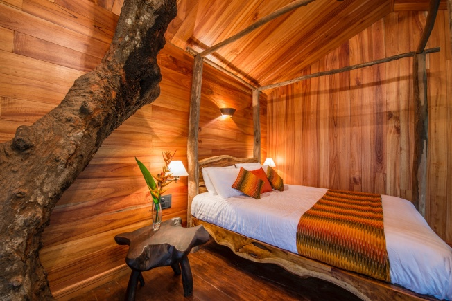 woodpecker-tree-house-bedroom