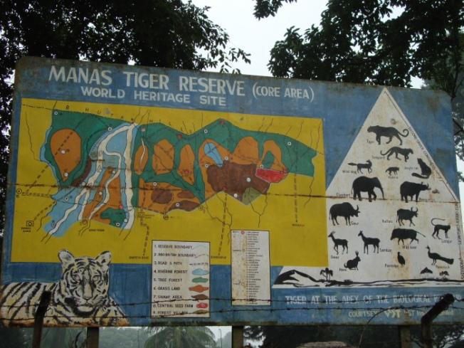 dsc05237-manas-tiger-reserve_anurag-mallick