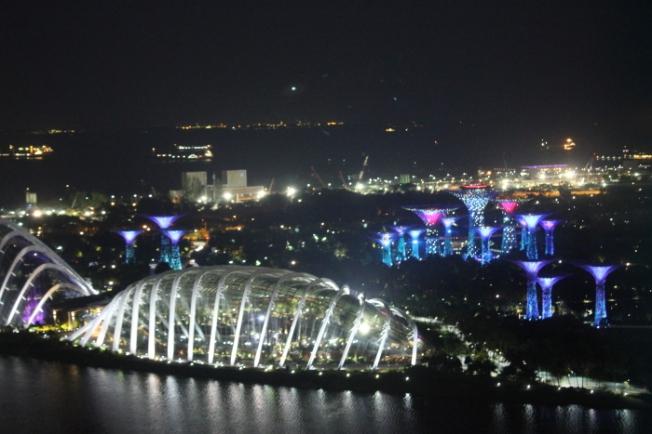 Singapore Flyer IMG_0315_Anurag Mallick