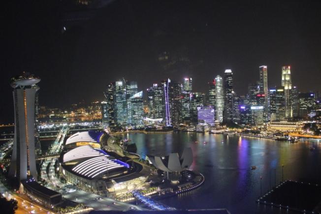 Singapore Flyer IMG_0324_Anurag Mallick