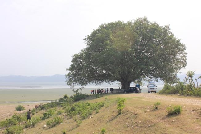 Pong Dam-IMG_4757_Anurag Mallick
