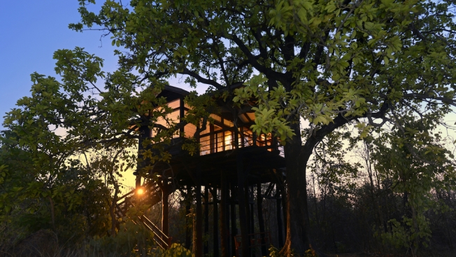 Pench Tree Lodge 2