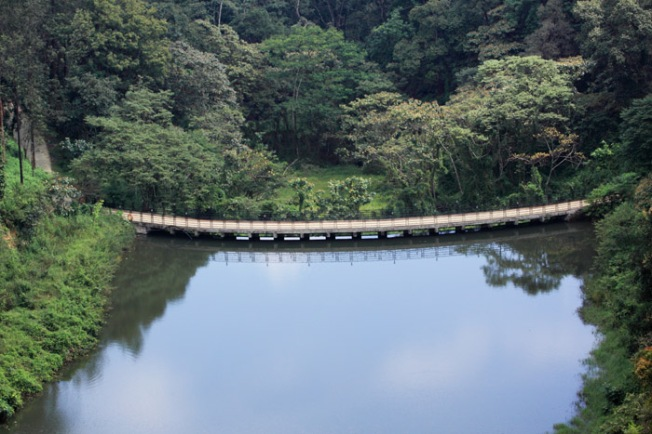 The Ibnii Coorg-Rainwater harvesting lake