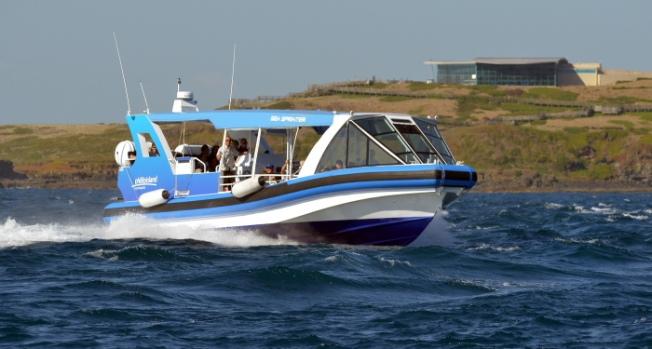 EcoBoat Tour_03_hires_Phillip Island-Anurag Mallick