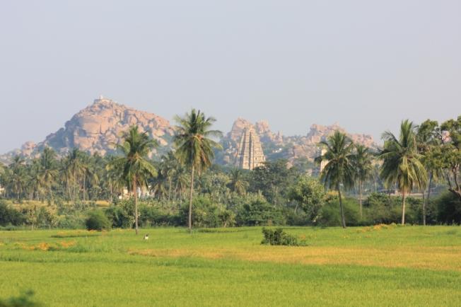 Hampi fields IMG_4032_Anurag Mallick