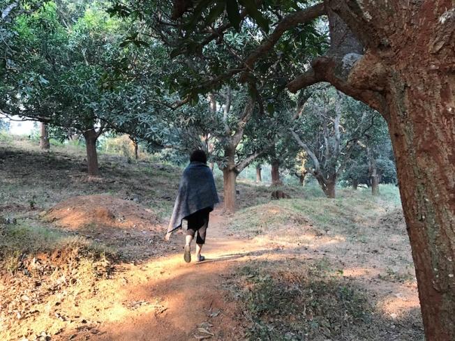 Gajalaxmi Palace nature walk IMG_6455