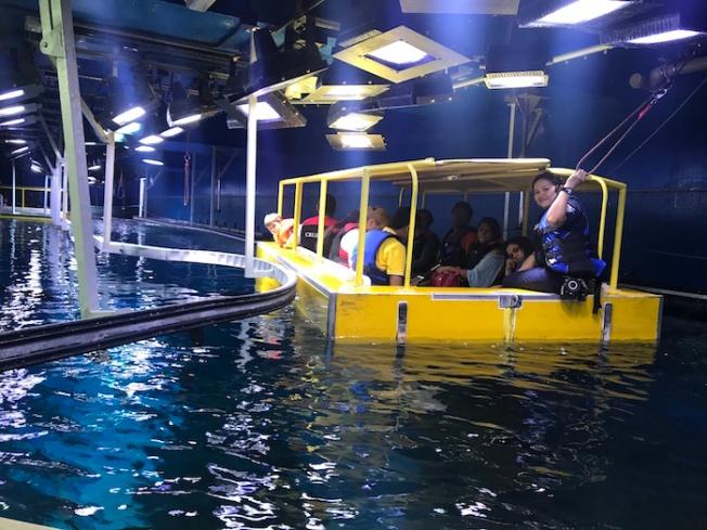 Dubai Aquarium tour IMG_1429