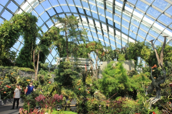 Garden City-Gardens by the Bay Cloud Forest IMG_0806_Anurag Mallick