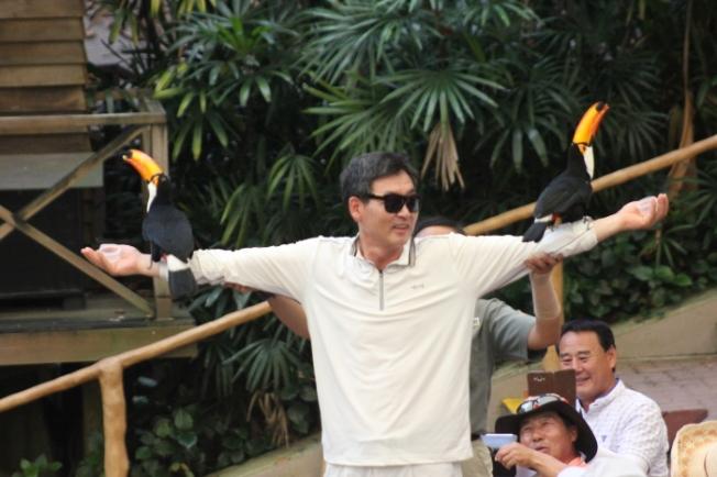 Jurong Bird Park-The High Flyers show IMG_9865_Anurag Mallick