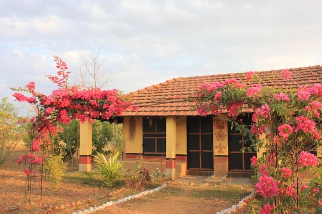 Amadubi Sal Cottage-Anurag Mallick IMG_8061