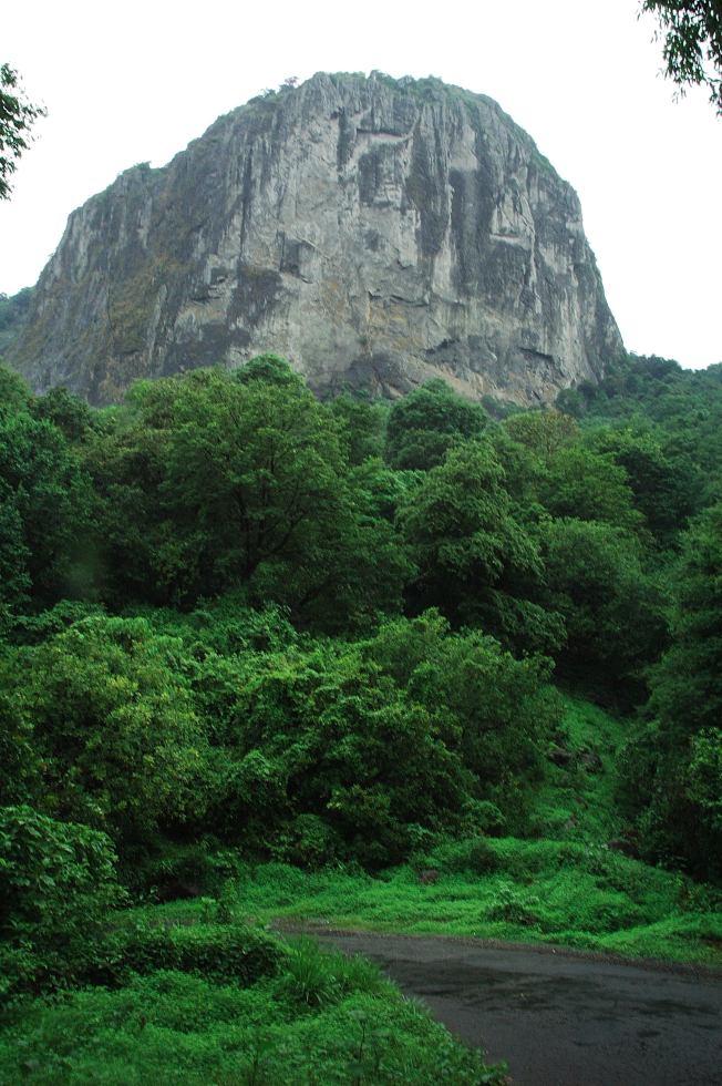 Kerala_Attapadi Silent Valley DSC_0097